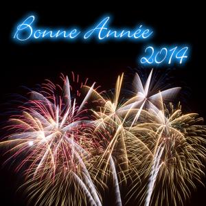 BonneAnnee2014_2